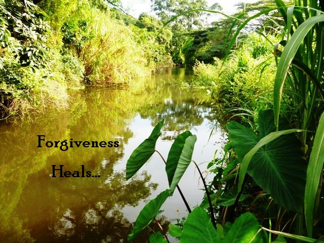 Can You Forgive Even if You Can't Forget?